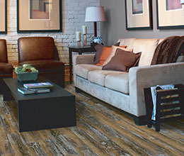 Living room_Laminate_City Scapes_Concord Cabin_260x220