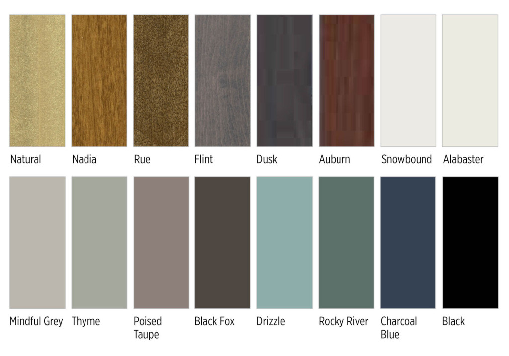 Color Trends_web